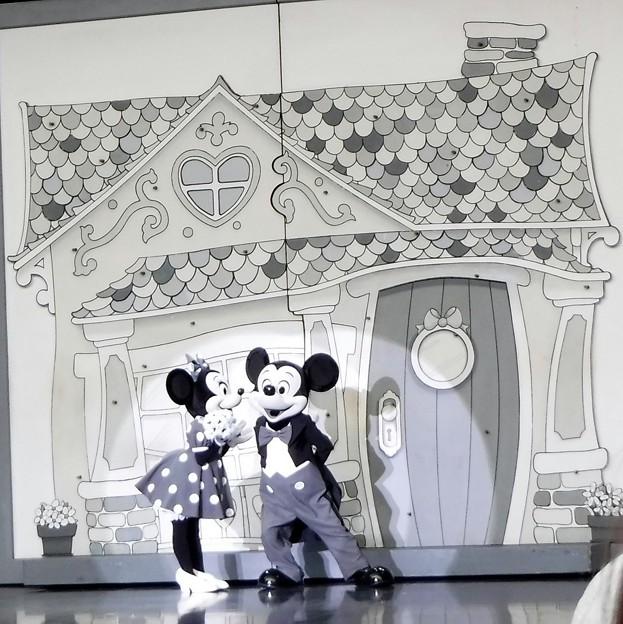 白黒ミッキーミニー 2019-1-27