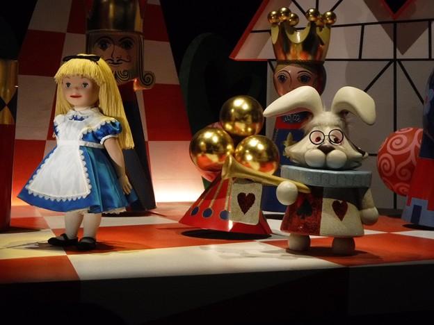 Alice and White Rabbit 2019-1-27