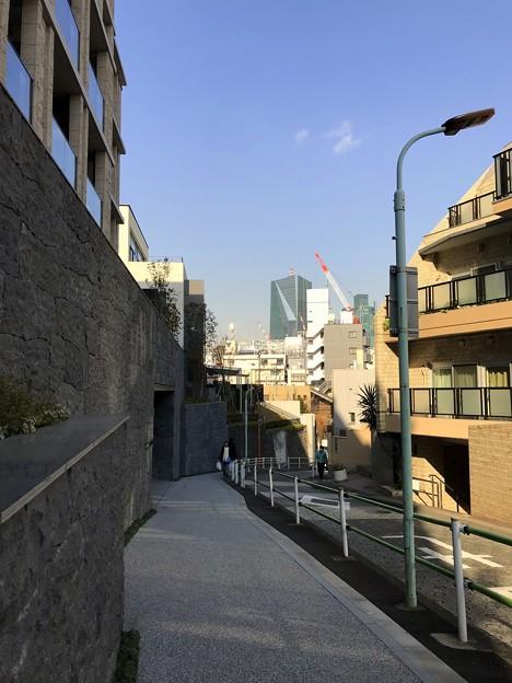 Photos: 明るいけど… 2019-1-30