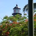 Photos: The Lighthouse 6-8-19