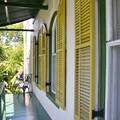 Green Veranda and Yellow Shutters 6-8-19