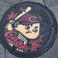 7/31~8/3 呉と広島、このマンホールの蓋は珍しいよね。カラーだし