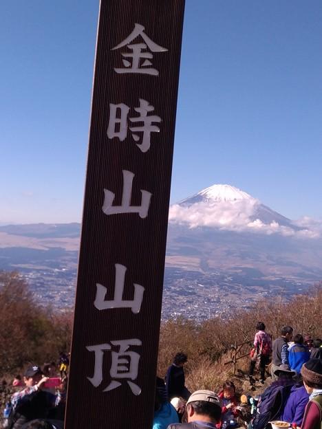 金時山ハイキング、山頂からみた富士山
