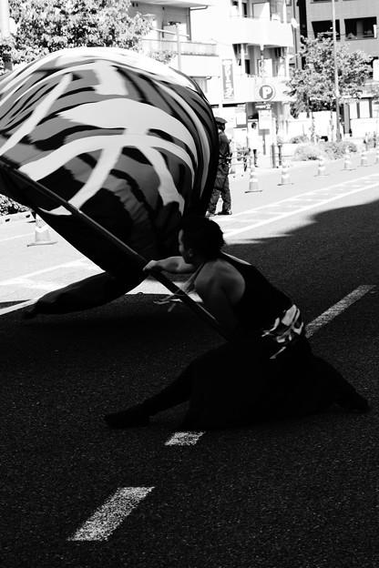Photos: ぐぅわぁ~ん