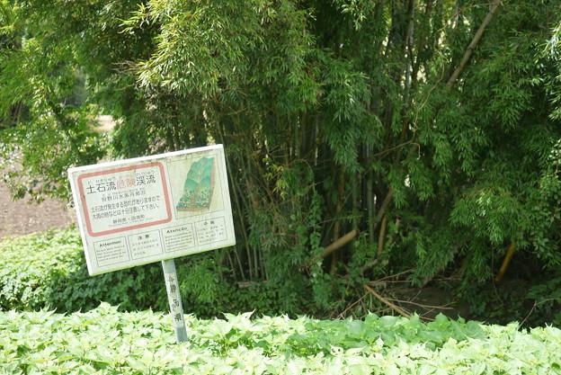 土石流危険渓流です@函南町柿沢川