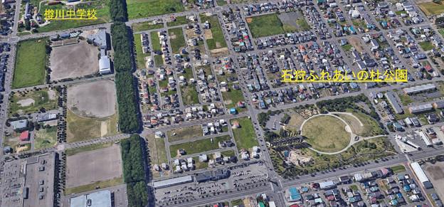 石狩ふれあいの杜公園所在図