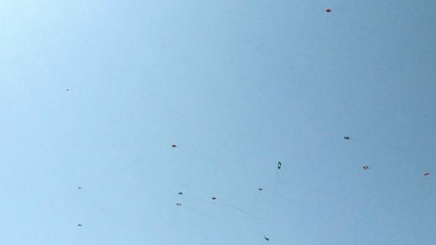 中田島砂丘の凧揚げ