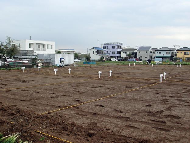 平塚市金田市民農園開園準備2
