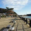 県立葉山公園と大浜海岸3