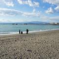 県立葉山公園と大浜海岸14