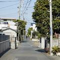 写真: 江ノ電を歩く17