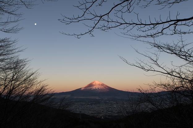 写真: 赤富士1