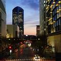 写真: 横浜の夕暮れ