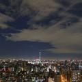 文京シビックセンターからスカイツリーを望む