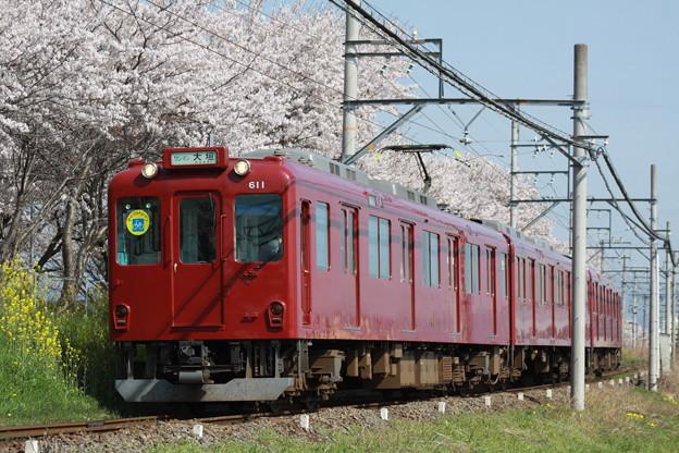 養老鉄道×桜2018年