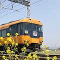 写真: 近鉄12200系(スナックカー)×菜の花