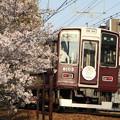 阪急8000系×桜2018年