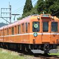 養老鉄道600系(ラビットカー・養老号)