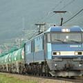 写真: EH200貨物