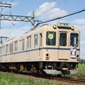 養老鉄道600系センロク塗装[桑名大垣]板