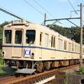 写真: 養老鉄道600系センロク塗装[桑名大垣]板