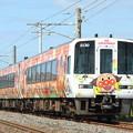 Photos: 2000系アンパンマン列車 特急南風