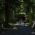 Photos: 戸隠神社奥社
