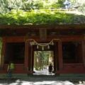 写真: 戸隠神社奥社