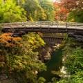 Photos: 甲斐の猿橋