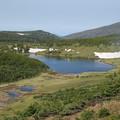 写真: 静かな湖畔の・・・