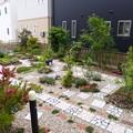 Photos: 2014.5.20現在の我が家の庭