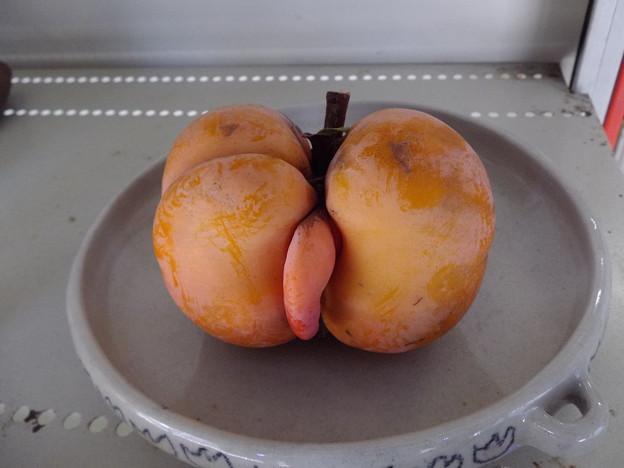 ちんちん柿