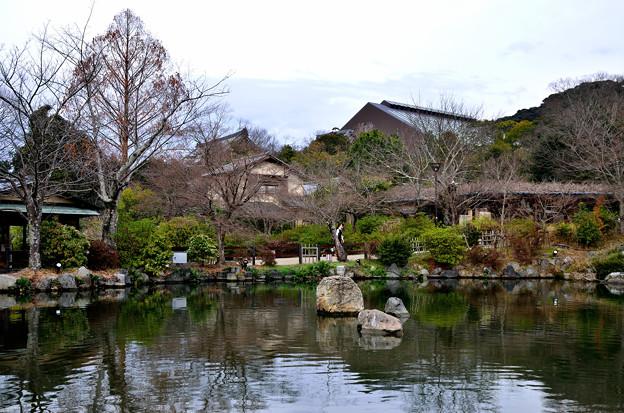 2016_0306_153055_名勝 円山公園