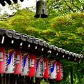 写真: 2018_0519_140547 化野念仏寺
