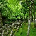 写真: 2018_0519_135257 化野念仏寺