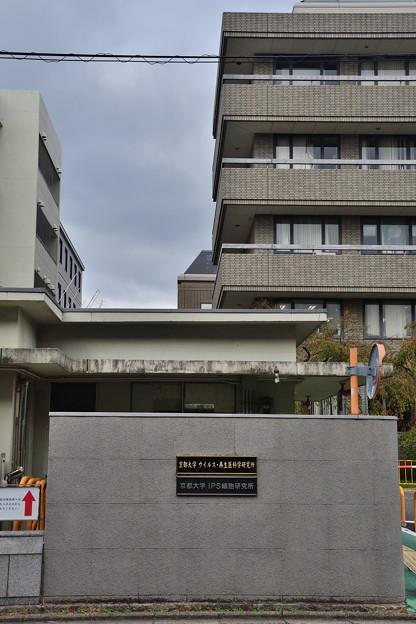 2018_1104_131503 京都大学iPS細胞研究所