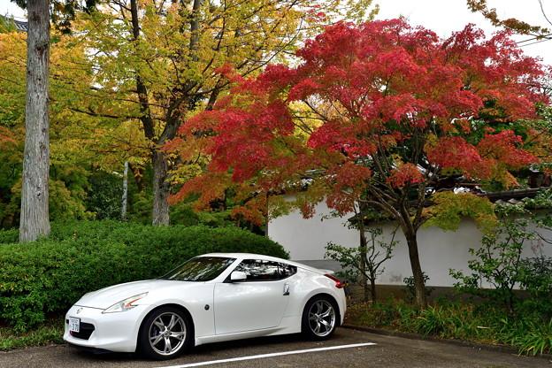 2018_1104_143123 紅葉と白いスポーツカー