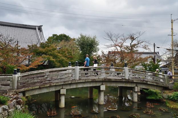 2018_1104_140859 金戒光明寺の極楽橋