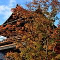 Photos: 2018_1104_155532 南禅寺三門