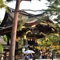 2018_1118_141208 豊国神社