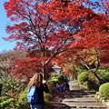 Photos: 2018_1123_115206 京・西山・善峯寺