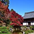 Photos: 2018_1123_113741 京・西山・善峯寺