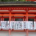 写真: 2018_1202_152120 下鴨神社