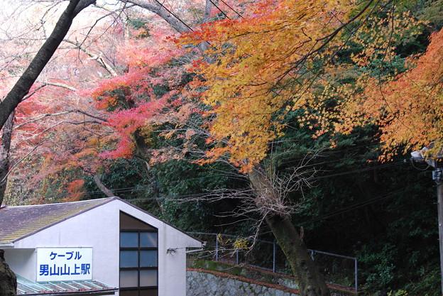 2009_1206_110152 ケーブル男山山上駅