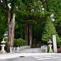 Photos: 2019_0616_093459 一の橋