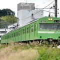 Photos: 2013_1019_143744_103系