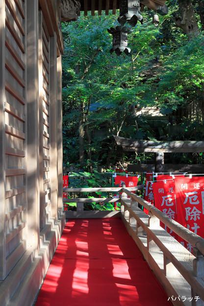 所狭しと… 鎌倉・八雲神社