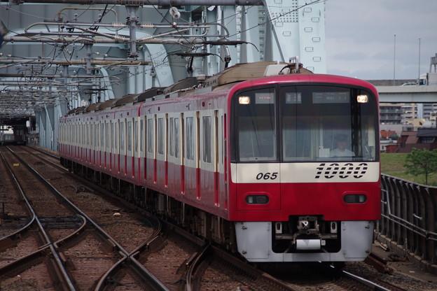 IMGP5585