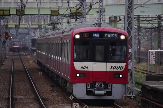 IMGP1903