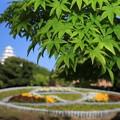 Photos: 新緑と姫路市花の銀行花壇